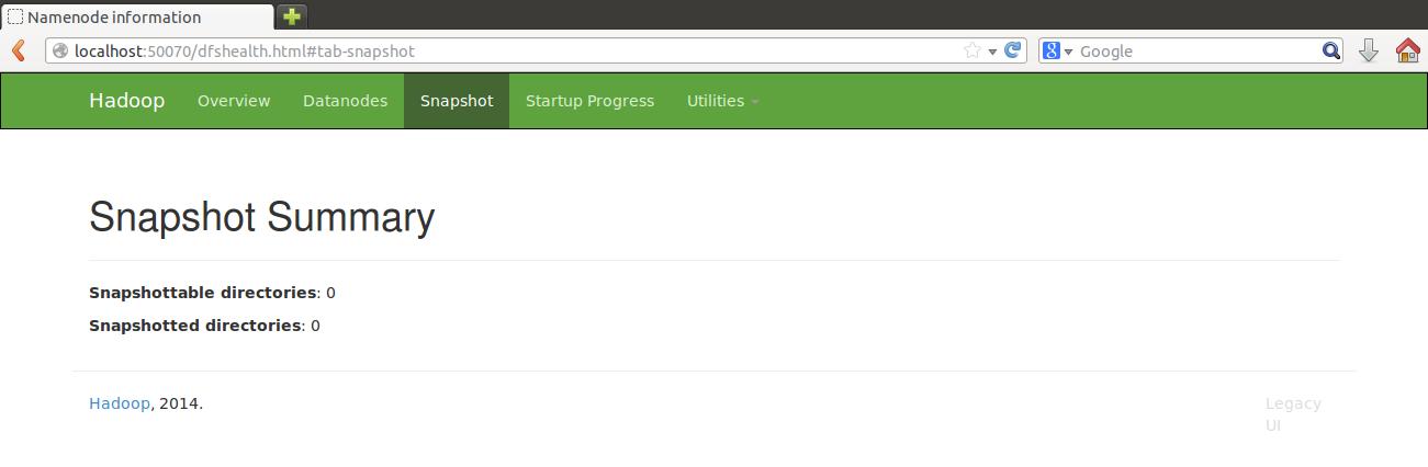 Web UI Snapshot